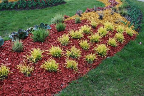 Création de jardin à Villedieu-les-Poêles